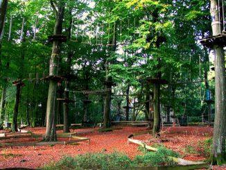 Klettergärten sind eine Mischung aus Wald, Fitnessparkour und Park-Anlage. Foto (C) Hiltrud Möller-Eberth / flickr CC BY 2.0