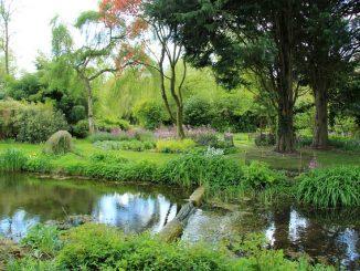 Gooderstone Water Garden im Frühling, Foto (C) Karen Roe / flickr CC BY 2.0