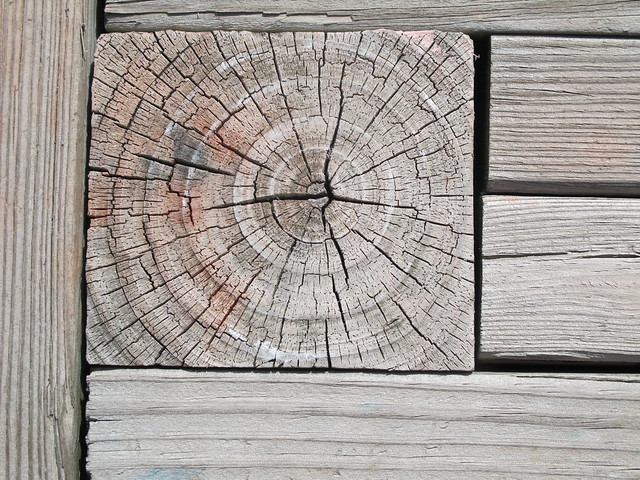 Konstrukionsdetail mit Hirnholz, Foto: bptakoma / flickr CC BY 2.0