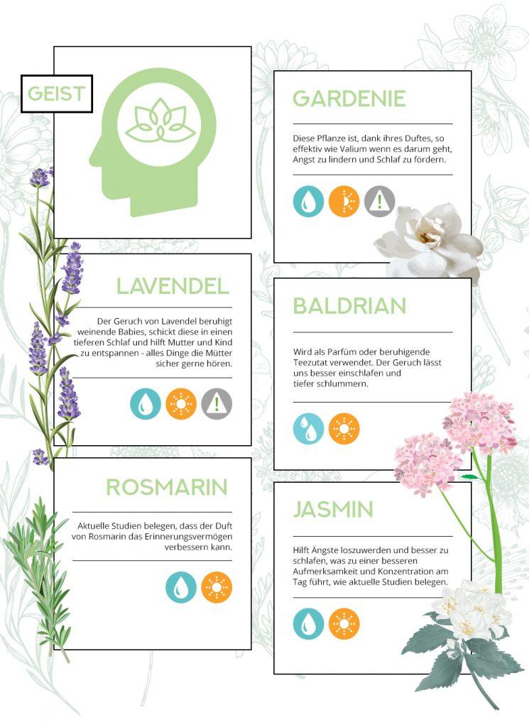 Abbildungen und Näheres: Auf dieser Webseite ist eine schöne Zusammenstellung über die wohltuenden Kräfte von Pflanzen zu finden: LadenZeile.de