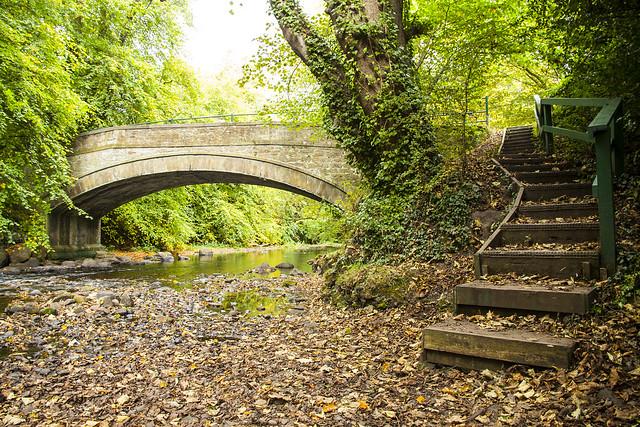 Typisch September: Noch grün, aber bereits herbstlich. Foto: John_McK / flickr CC BY 2.0