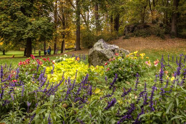 Auch im Herbst und Winter gedeihen Blumen. Foto: Sjensen~ / flickr CC BY 2.0
