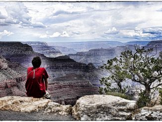 Meditation ist ein gutes Mittel, um die Achtsamkeit zu trainieren, den Geist frei zu halten und sich vor Emotionen zu schützen, Foto: Alan E / flickr CC BY 2.0