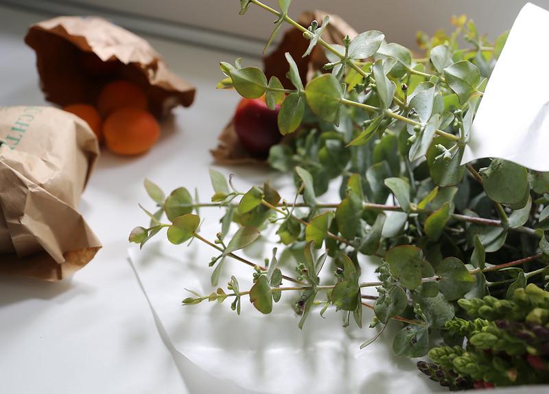 Eukalyptus-Zweige vom Markt, Foto: Stefanie Kraus / flickr CC BY 2.0