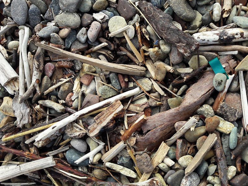 Strandgut mit Schwemmholz, Foto: Wonderlane / flickr CC BY 2.0