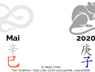 2020 - der Monat der Metall-Schlange