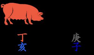 2020 - der Monat des Feuer-Schweins