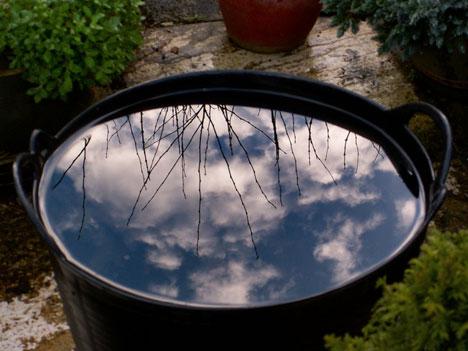 Wind und Wasser im Feng Shui: Symbole für die Dynamik der menschlichen Wahrnehmung