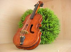Musikinstrumente im Lebensbereich Familie aufbewahren